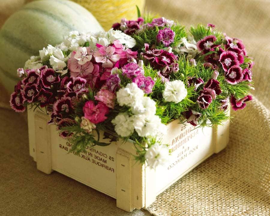 подарувати квіти