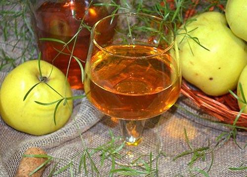 Рецепты домашнего вина из яблок в домашних  837