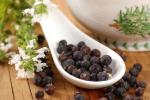 Как сделать настойку на можжевеловых ягодах